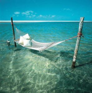 Hammock in the water